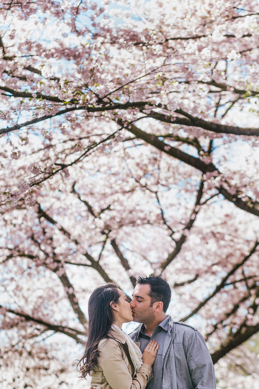 Queen Elizabeth Park Engagement Brett Kim-6