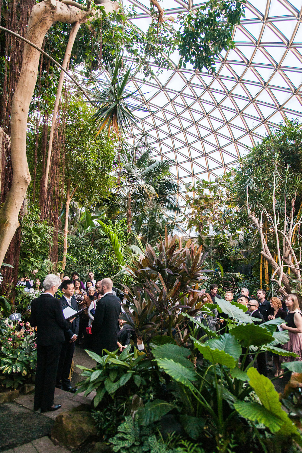 Gay Wedding at Bloedel Conservatory-13
