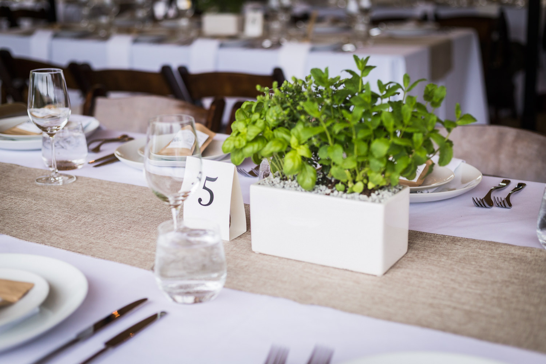 UBC Farm Wedding (12 of 26)
